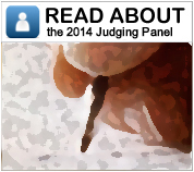 Read About Judging Panel